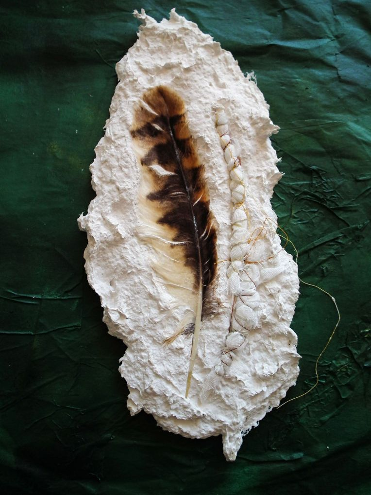 plaster feather1